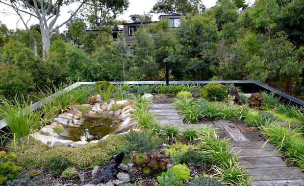150504-Forest-Lodge-Eco-House-Green-Roof_620x380