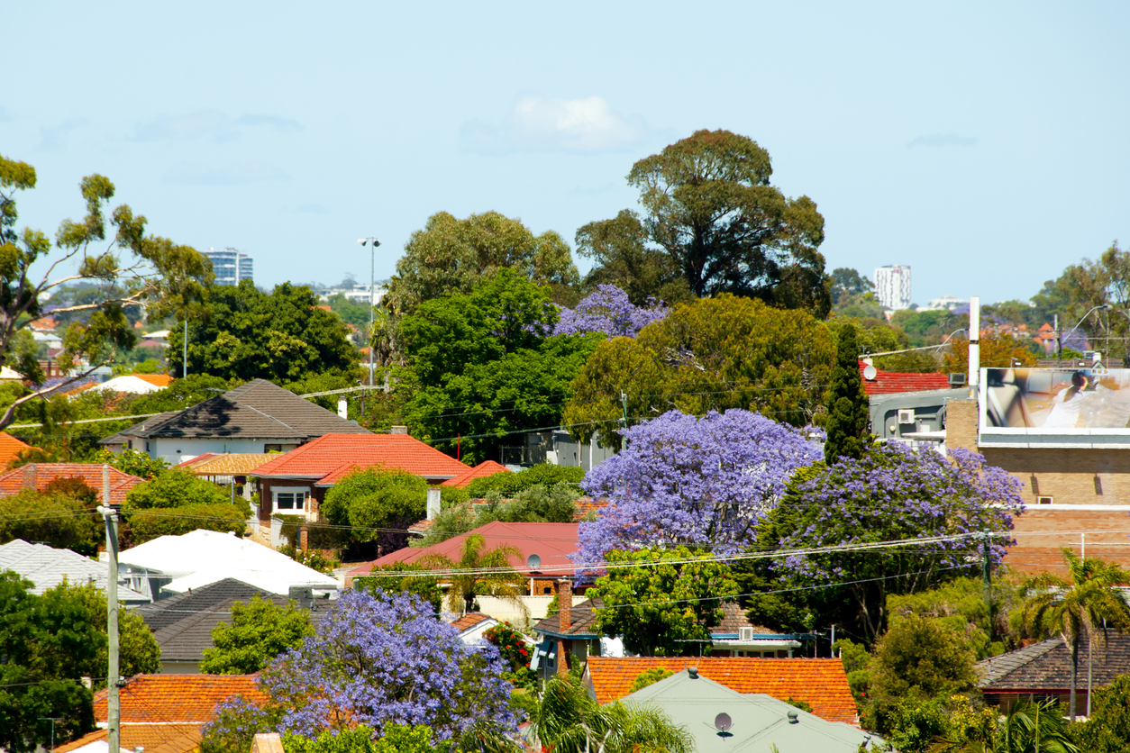 Bucking the trend, Queensland now has 38 suburbs, up from 34 last year.