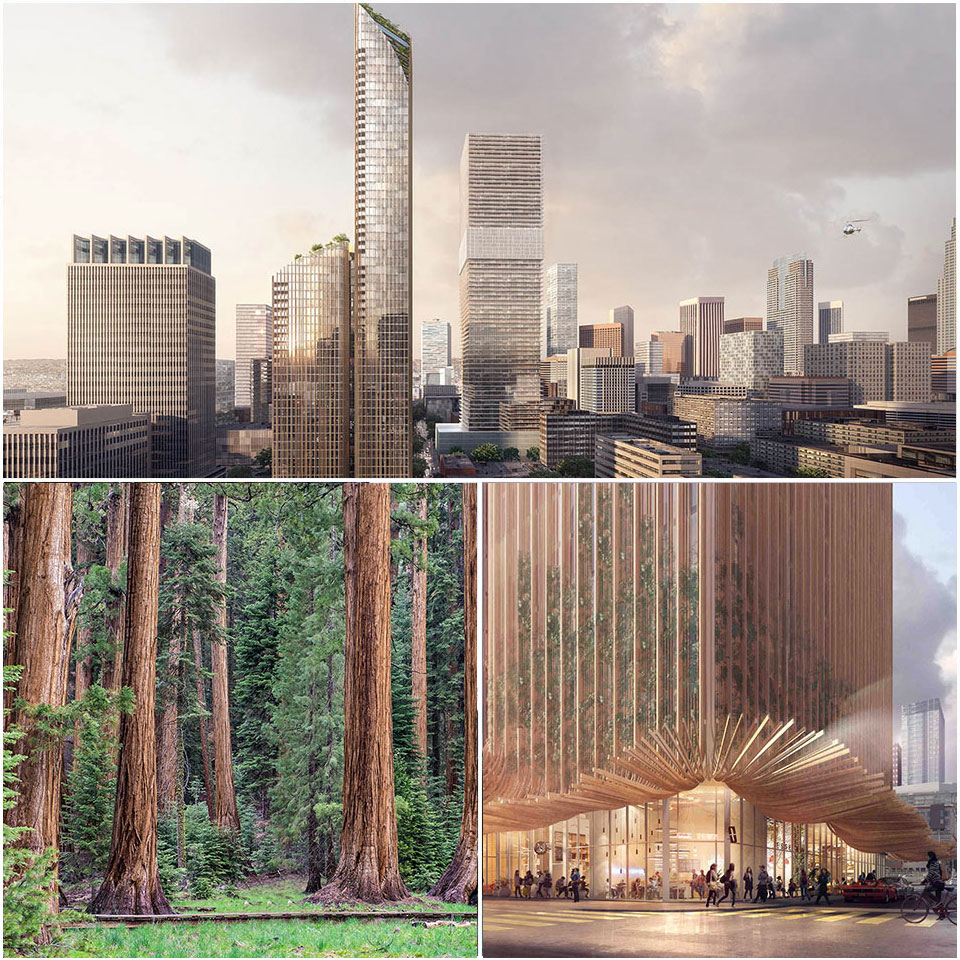 Plans for 'Sky Tree' in Los Angeles takes inspiration from nature's Californian Redwoods.