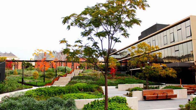 Bendigo Hospital Project   OCULUS, Paul Thompson (VIC)