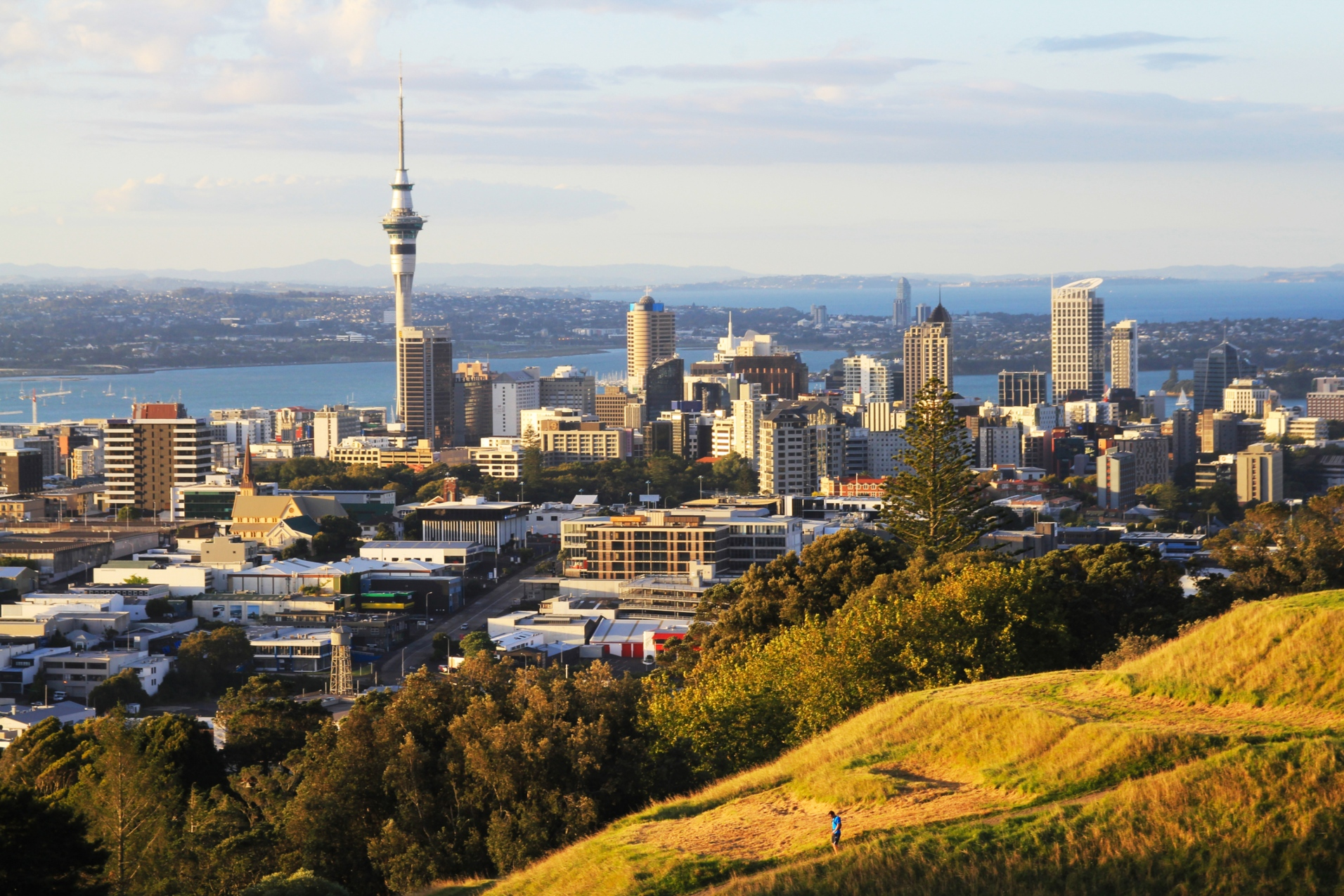 The Auckland acquisition marks the first move into New Zealand's market for Logos as the logistics specialist expands its Asia Pacific footprint.