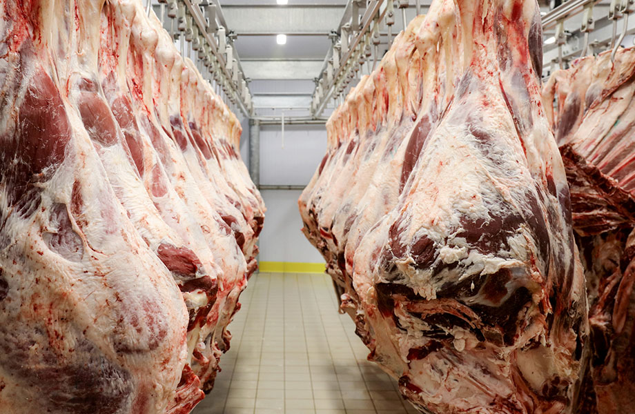 Global meat production has increased 4–5 times from 71 million tonnes annually in 1961 to 318 million tonnes in 2014, and is projected to increase further to 455 million tonnes in 2050. The report says this level of production and consumption of red meat is a substantial driver of The Global Syndemic.