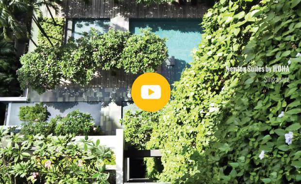 CG-featur-Image-Video-1