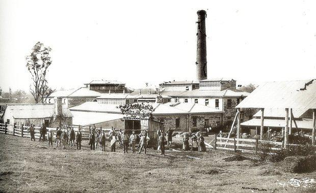 Collingwood-Paper-Mill