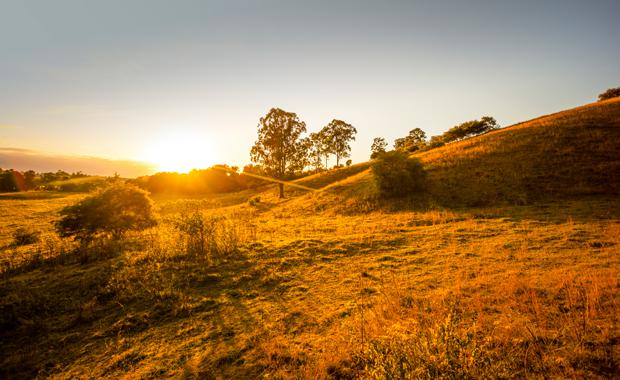 Ellendale-dusk-landscape_LRG