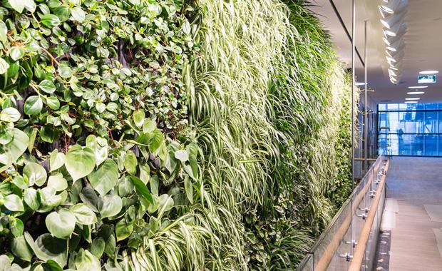 Lendlease_Junglefy-breathing-wall_1