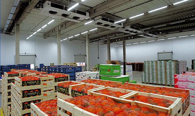 Refrigerated-logistics