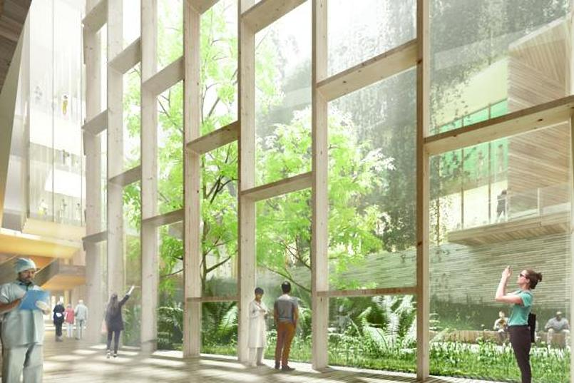 The design takes inspiration from the tree-lined university campus, with an emphasis on opening the building to the surrounding landscape.