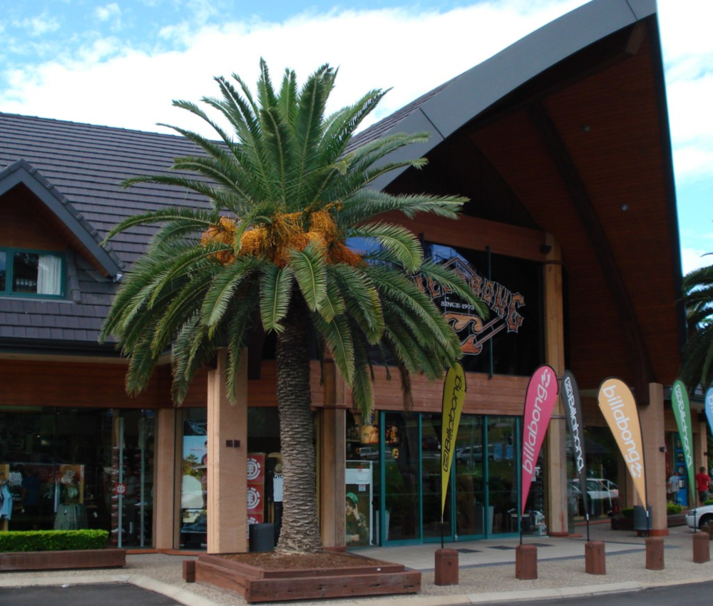Billabong Surfwear HQ and Warehouse in Burleigh Gold Coast