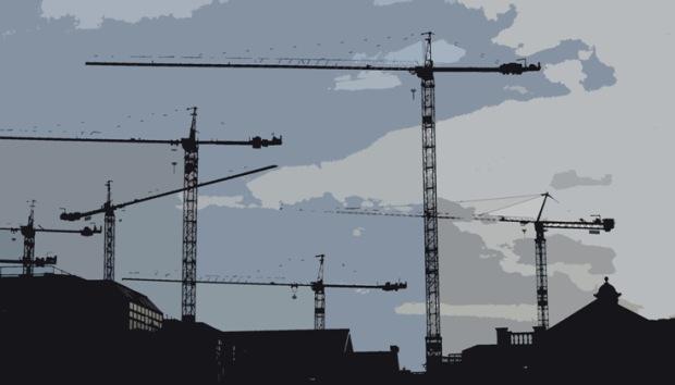 cranes298842cut1-e1440651624920