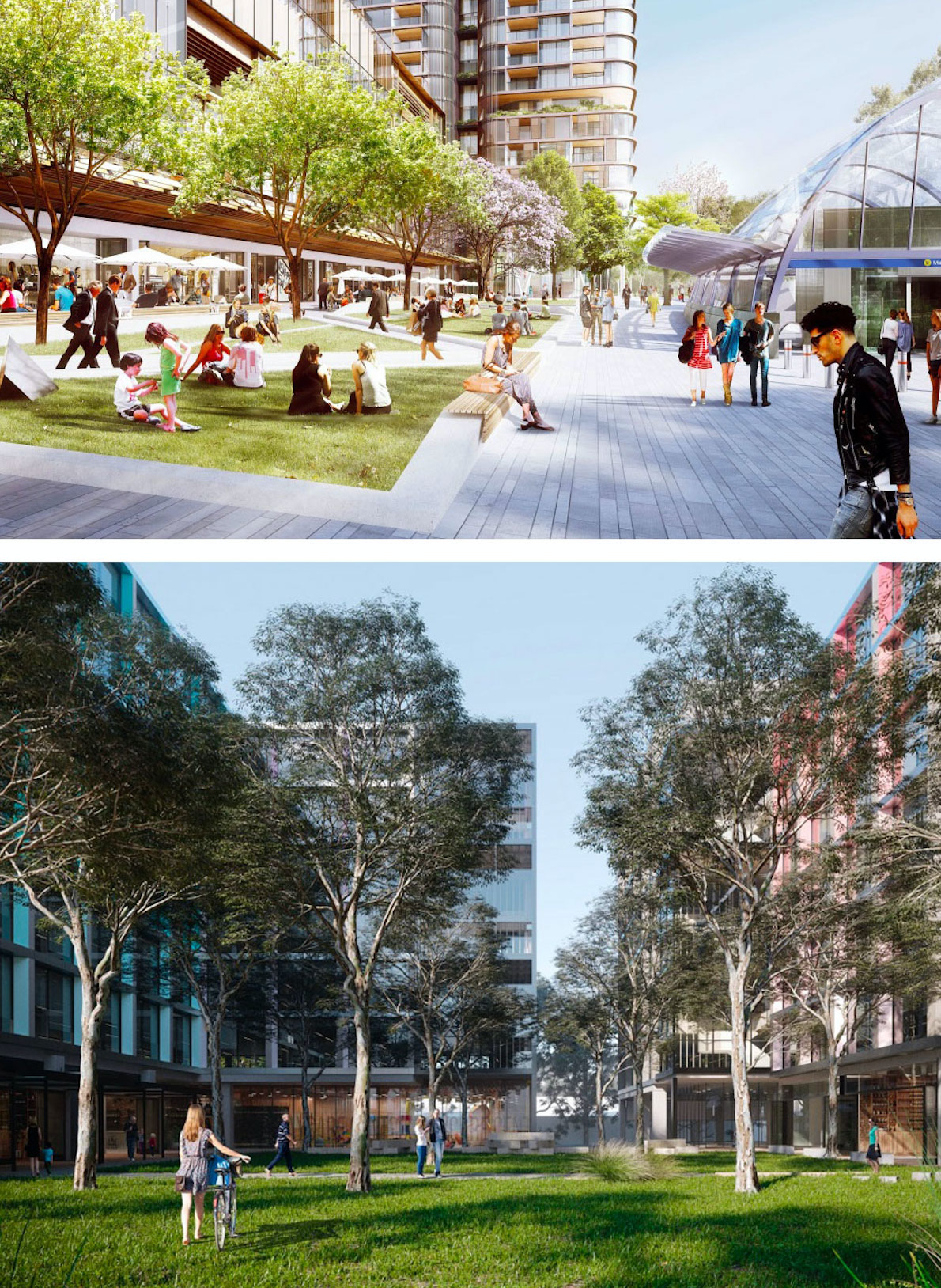 A network of public spaces will help activate the precinct.