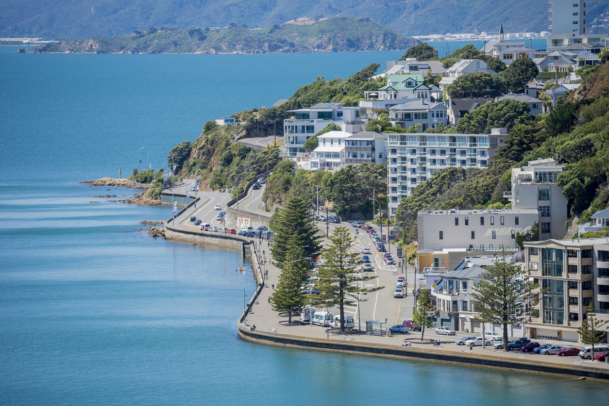 New Zealand House prices. Housing prices