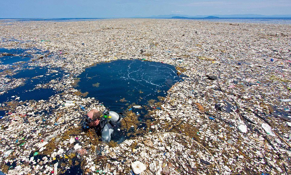 The Pacific Garbage Patch contains 1.8 trillion pieces of plastic, and covers an area twice the size of Texas.